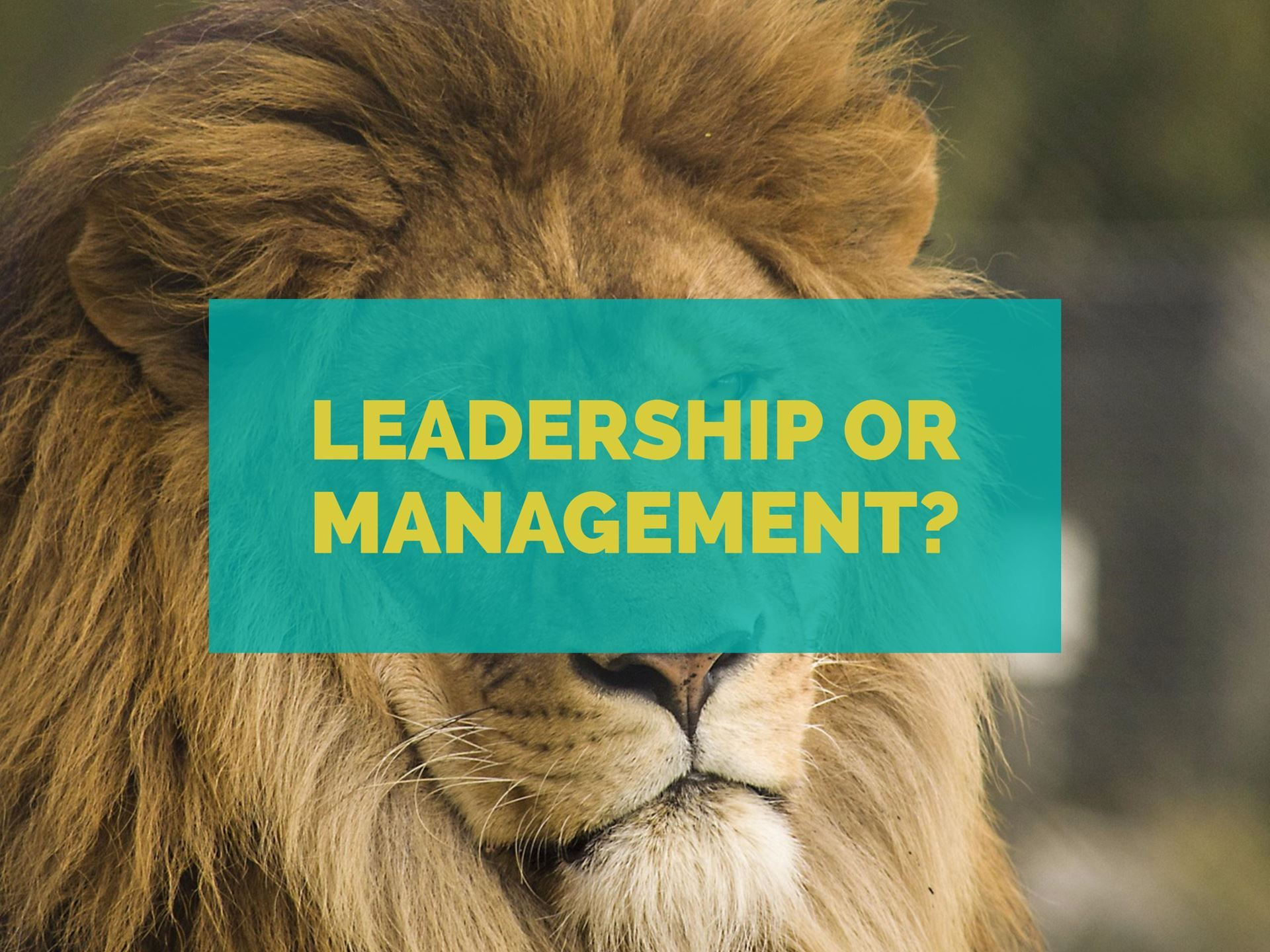 chattanooga area association for talent development managers and in this presentation we ll learn how developing interpersonal management skills can allow you to manage